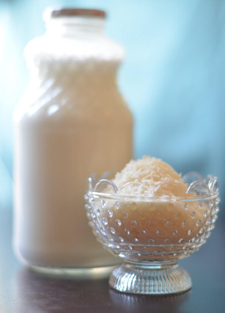 Home Made Coconut Milk