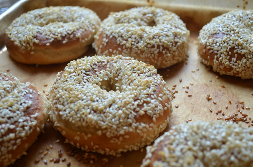 Montreal-style Bagels fresh from the oven