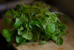 Almost-Instant Watercress Soup